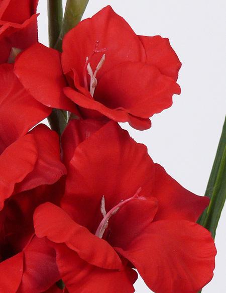 kunst bloemen gladiolen