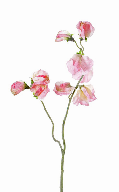 Artificial flowers and plants wholesale top art int sweet pea 40cm mightylinksfo