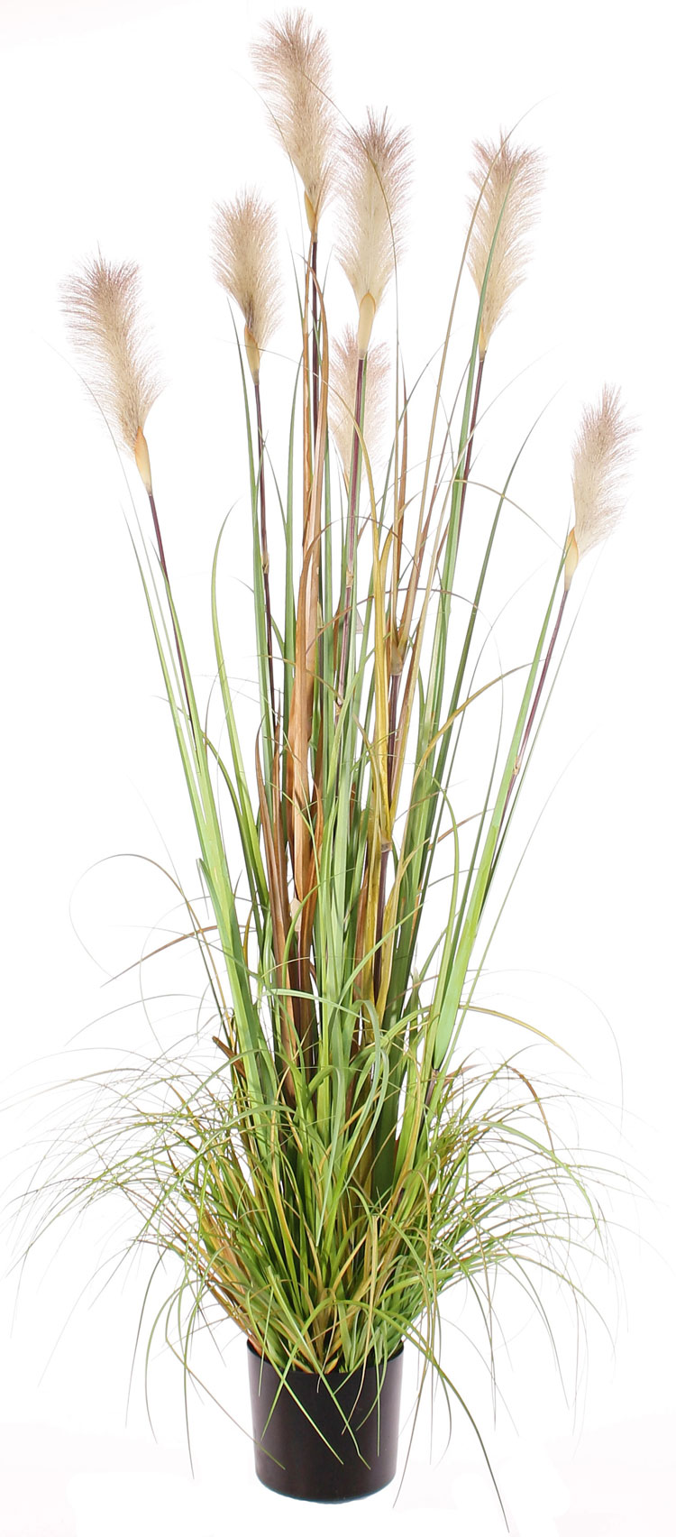 Artificial Flowers And Plants Wholesale Top Art Int Detailansicht Flowering Plants Artificial Reed Grass Plant X7 182cm In Plastic Pot Special Offer