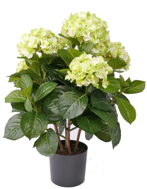 kunstpflanze hortensie im topf 55cm hoch ca 45cm ebay. Black Bedroom Furniture Sets. Home Design Ideas