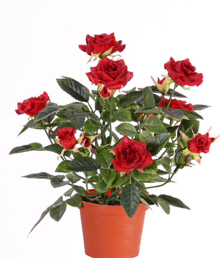 Flores y plantas artificiales mayorista top art int for Plantas ornamentales rosas